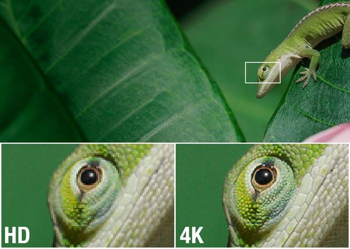2019 4K TV Buying Guide - ProductReview com au