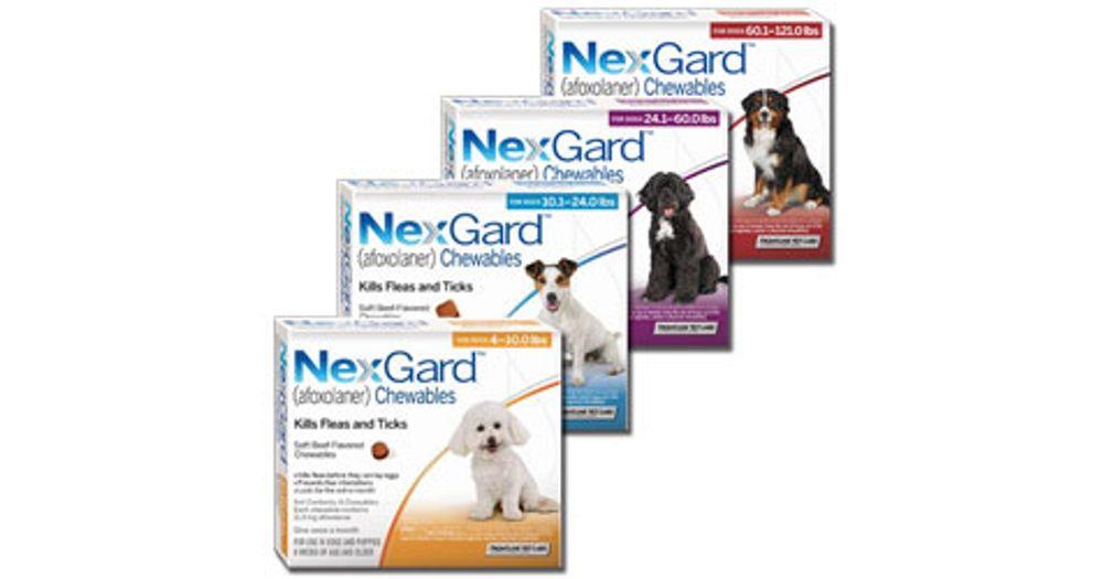 NexGard Chewables Reviews - ProductReview com au